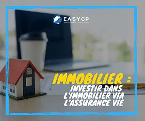 immobilier-Investir-dans-l'immobilier-via-l'assurance-vie