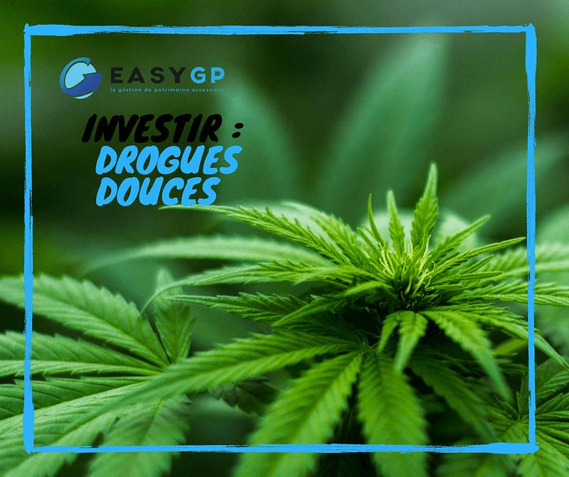 easygp-drogue-canabis-douce-investir-marche